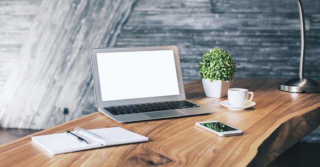 10 Best Plants for Your Office Desk in South Africa
